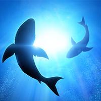 Blue Oceans und Neue Geschäftsmodelle